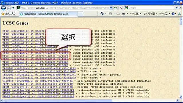 UCSC Genome Browserの使い方 ~表示編