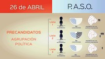 Vídeo Informativo Proceso electoral 2015