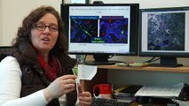 Andrea Cooper: Searching for New Tuberculosis Vaccine for Children
