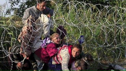 O filhote de Putin e a crise de refugiados
