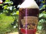 Homemade Soda, Homemade Ginger Ale and Homemade Coca Cola - No Problem For Fizz Giz