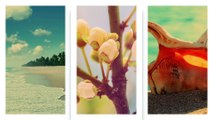 Pixel Film Studios - TranSlice: Photo - Split Screen Transitions - Final Cut Pro X FCPX
