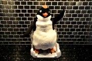 Ramon the Dancing Penguin from Happy Feet!!!!
