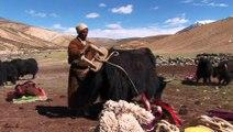 "CDM ""BHOUTAN-LADAKH, Joyaux de l'Himalaya"" BA du film de Guy COUSTEIX"