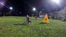 K9 Schutzhund Training - Escape Bite