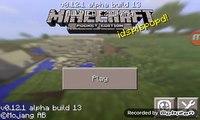 Pe minecraft 0.12.0 se poate face portal spre end