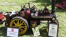 Vintage miniature steam engines.
