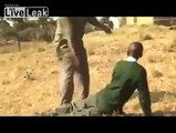 Africans Whipping Africans
