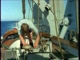 HMS Sheffield (1975)