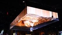3D Face Illusion at a Las Vegas Bar