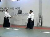Morihiro Saito Sensei. 13 Tachi Dori