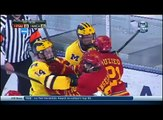 Ferris State Hockey: Michigan Wolverines  Highlights 12/11/13