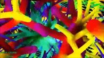 Trance Dance Club Music Video. New Hot EDM 2015, Best Electro House. 3D Pop Cartoons