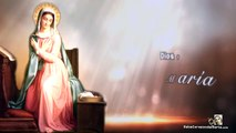 Santa María, Madre de la fe †