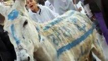SHOAH HEBDO N 1 VS charlie hebdo-false flag paris