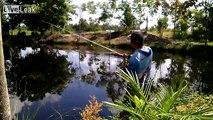 casting gabus in the swamp