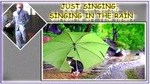 I'M SINGING IN THE RAIN. GENE KELLY. VIDEOART