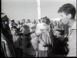 """Los camellos de """"Lawrence de Arabia"""" (""""Lawrence of Arabia"""" camels)"""