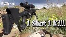 1 Shot 1 Kill 338 Lapua Magnum