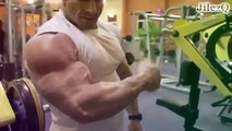 Bodybuilding Motivation 2015   BICEPS   TRICEPS WORKOUT