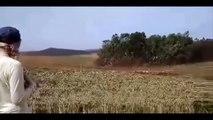Grupo criminoso MST invade fazenda da ESALQ em Londrina.