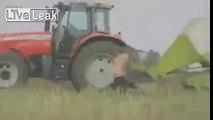 Got a farm? Bored? You gotta see this!!!!