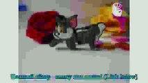 Free shipping Hello Kitty cartoon pen drive s