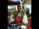 Funny Somali Ever (Rer Garissa+Rer Xamar=Rer Bari) (add Snap Duqbilow)