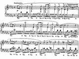 Chopin Prelude Op.28 No.15 (Horowitz)