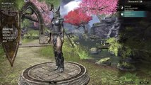 teso(the elder scrolls online)