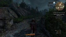 The-Witcher-3:-Wild-Hunt---Let-there-be-sunsh