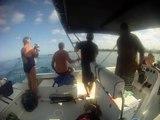 nage avec les dauphins vidéo go pro ile maurice octobre 2012