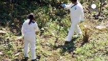 Μεξικό: Νέα έρευνα για την εξαφάνιση των 43 φοιτητών - Εξοργισμένοι και δύσπιστοι οι συγγενείς τους