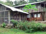 Manu Biosphere Reserve-Peru Amazon-Tour Operator Manu National Park