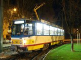 Trams and trains