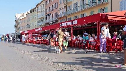 Sénéquier - Restaurant Saint-Tropez - Via-selection.com 2015