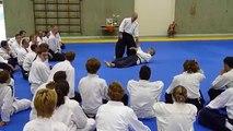 Hiroshi Ikeda At Summer School of Aikido in Markelo, 2009