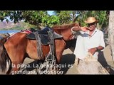 Destination for a Day 01 Playas del Coco | Welcome to Playas del Coco