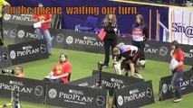 FCI 2012 World Dog Agility Championships Susan Garrett & Feature Indivdual Agility