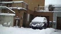 Neve del 6-7 gennaio 2009 a Mendrisio