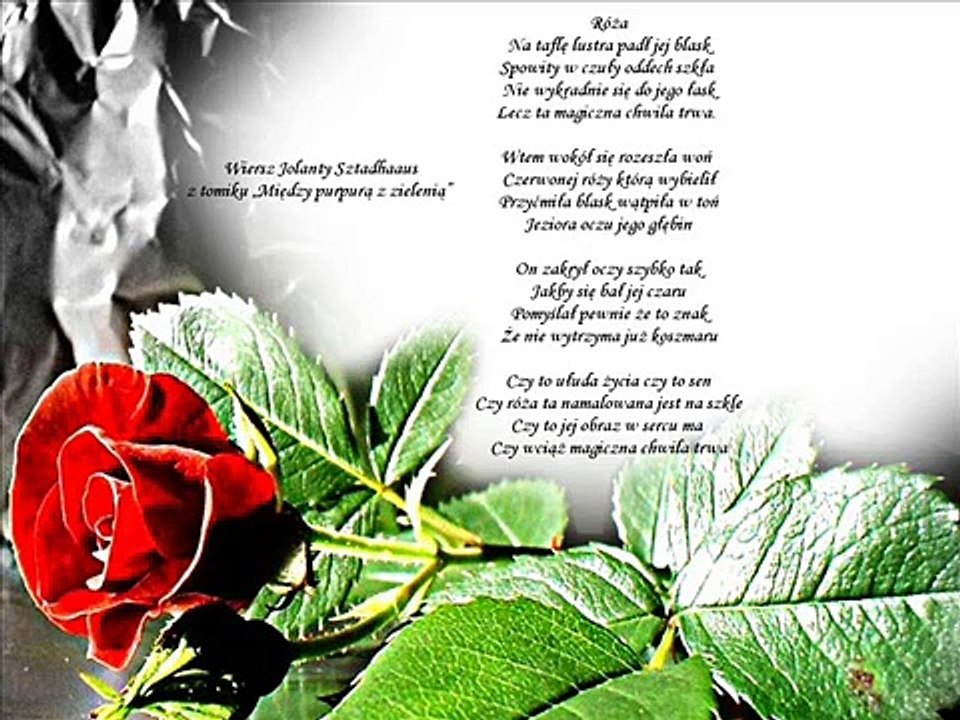 Róża Wiersz Jolanty Sztadhaus Dariusz Marek Gierej Prezezentujwmv