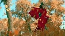 HERO di Zhang Yimou (2002)