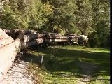 Steam in Romania, CFF Viseu de Sus 12