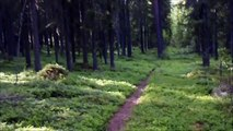 Ristijärvi 16.7.1941 Perttu Kemppainen