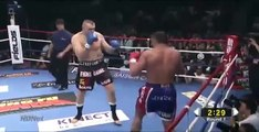 Peter Aerts vs Semmy Schilt - K-1 World GP Semi Final 2010