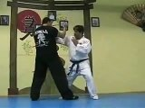 Jujitsu Locks, Atemi Ryu Jujitsu joint locks with striking