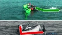 Réembarquer en eau profonde avec un Kayak Sit on top / Getting back in, when in deep water