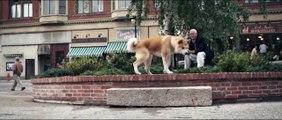 She's got a way - Hachiko, a dog's story
