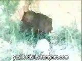Yeşil Erciş 2.Bölüm | VAN/Erciş Tanıtım Belgeseli Video