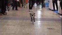 PRIMER-V2 robot rides a bike just like a man